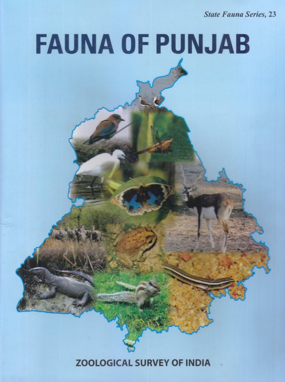 Fauna of Punjab