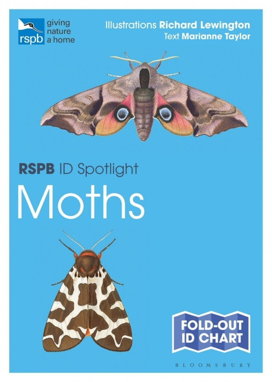 RSPB ID Spotlight: Moths