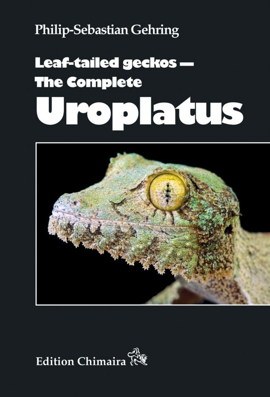 Leaf-Tailed Geckos – The Complete Uroplatus