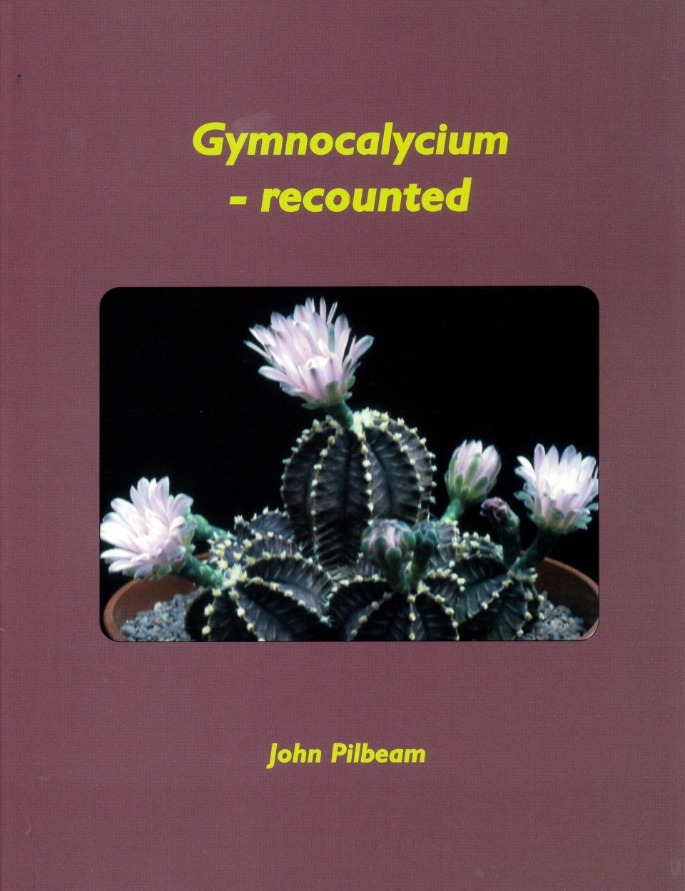 Gymnocalycium – Recounted