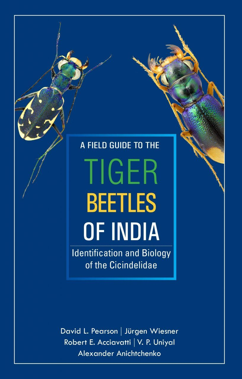 A Field Guide to the Tiger Beetles of India