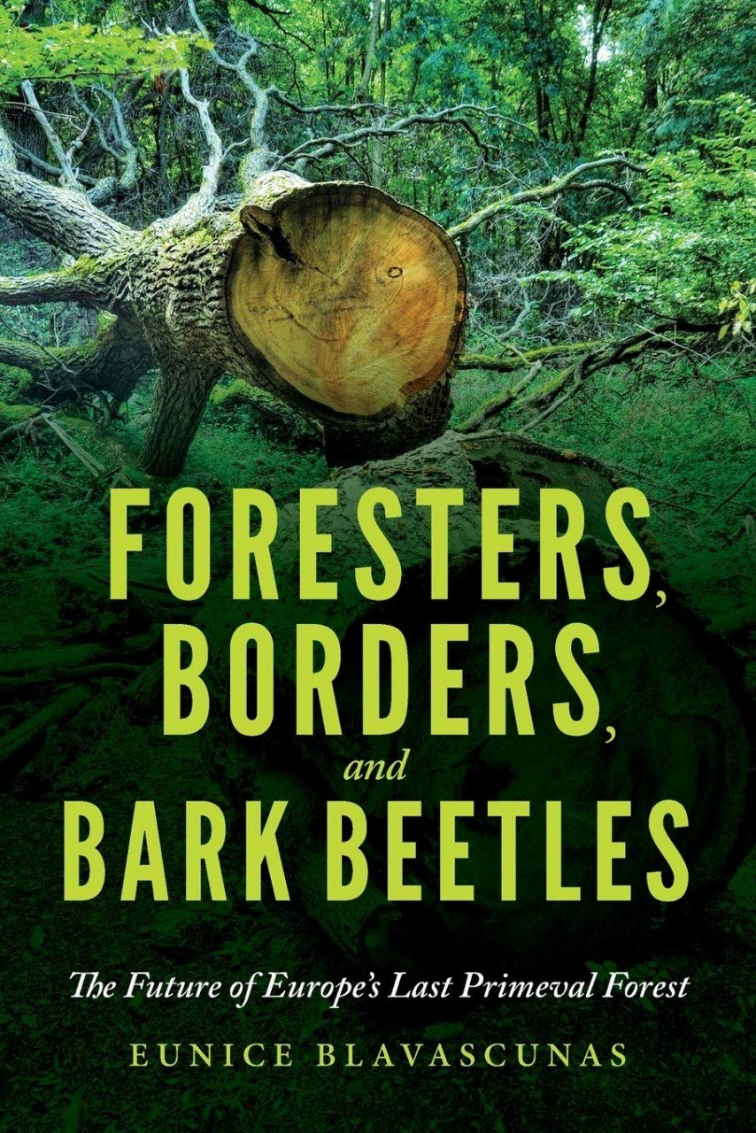 Foresters, Borders, and Bark Beetles