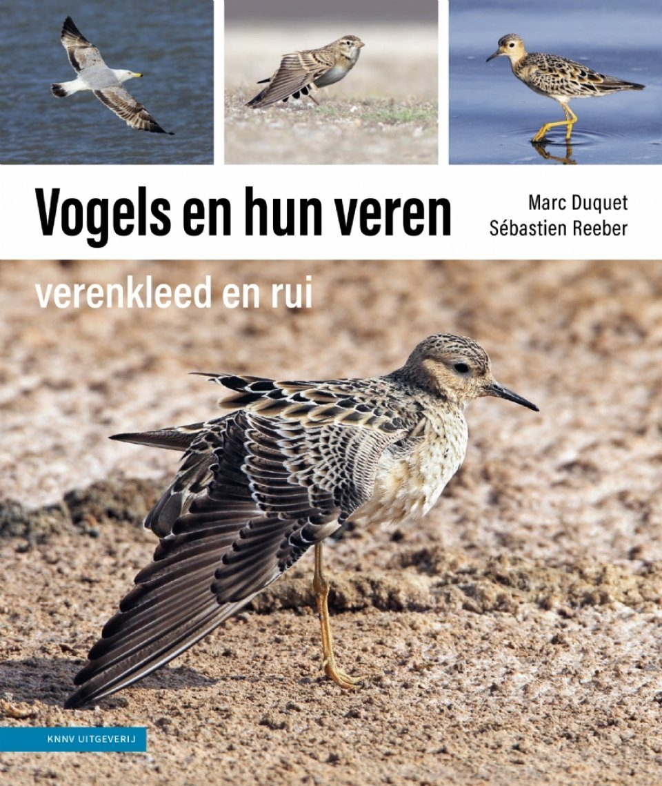Vogels en hun Veren: Verenkleed, Rui en Ruipatronen per Soortgroep [Understanding Bird Moult: A Guide for the Field Ornithologist]