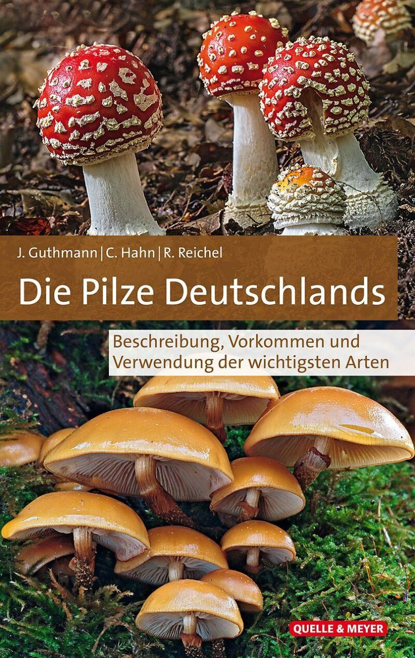 Die Pilze Deutschlands: Beschreibung, Vorkommen und Verwendung der Wichtigsten Arten [The Mushrooms of Germany: Description, Occurrence and Uses of the Most Important Species]
