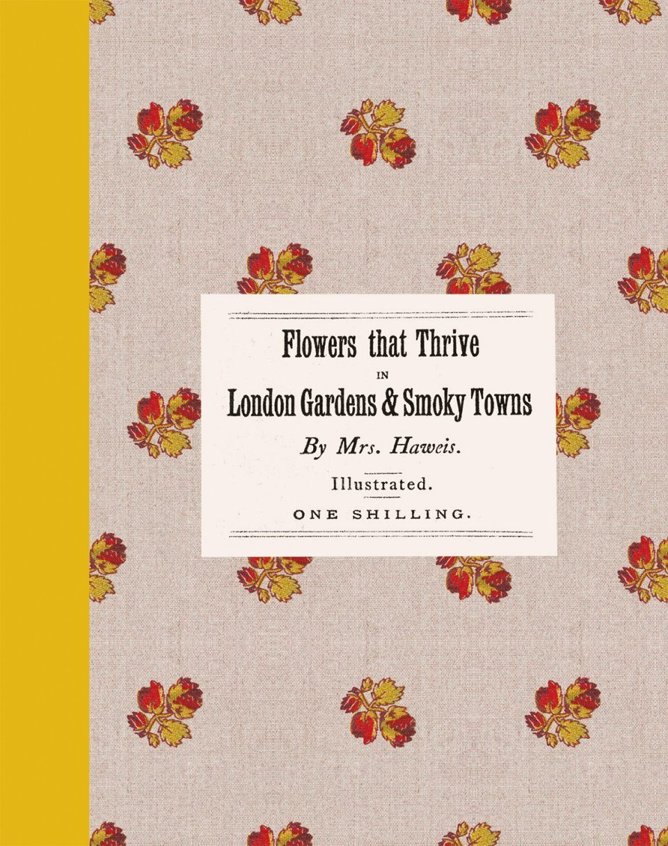 Flowers That Thrive in London Gardens and Smoky Towns