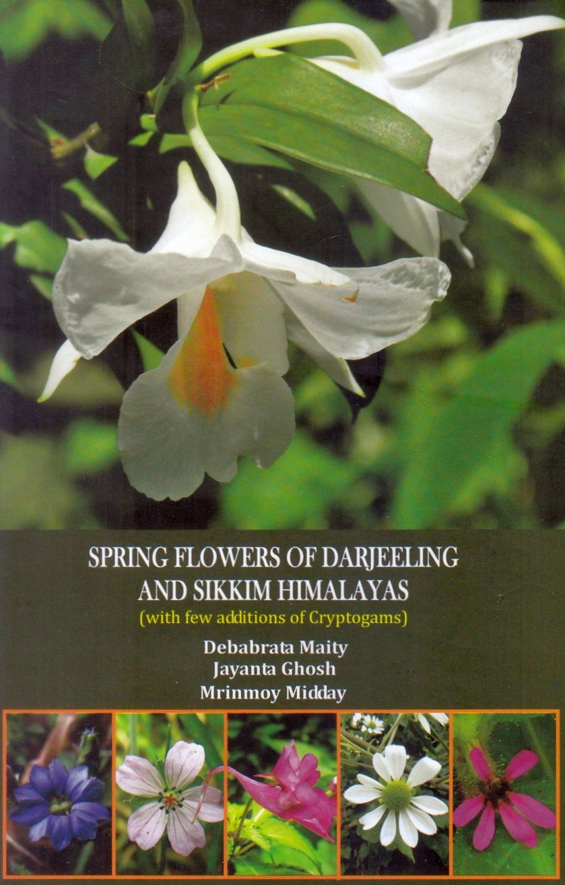 Spring Flowers of Darjeeling and Sikkim Himalayas