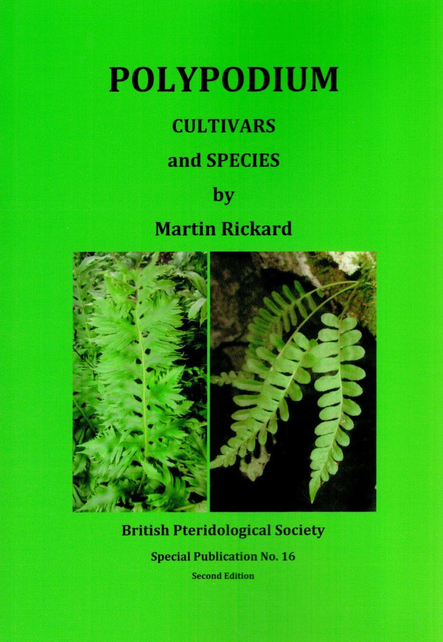 Polypodium Cultivars and Species