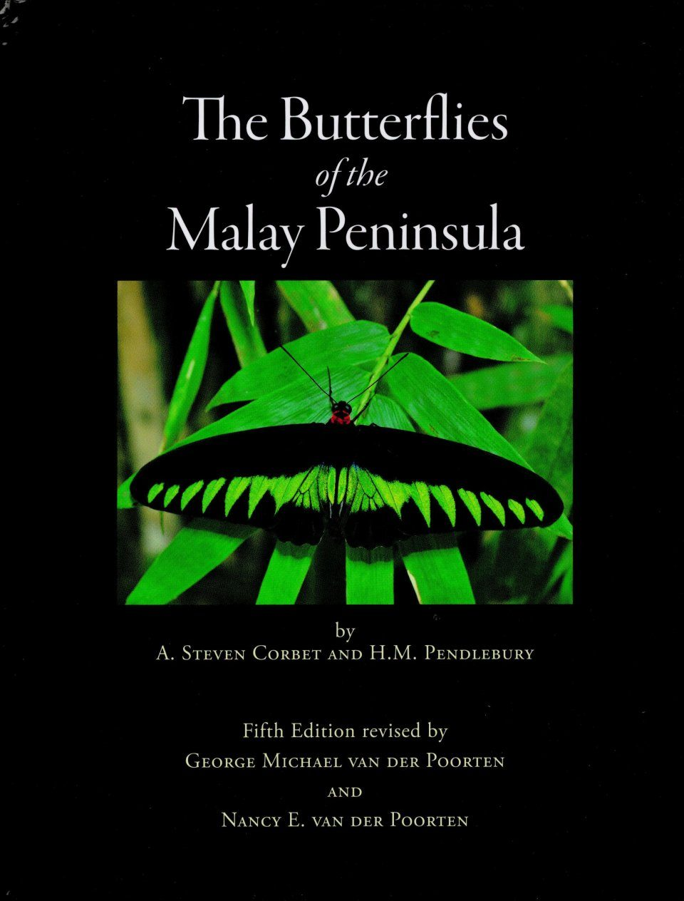 The Butterflies of the Malay Peninsula