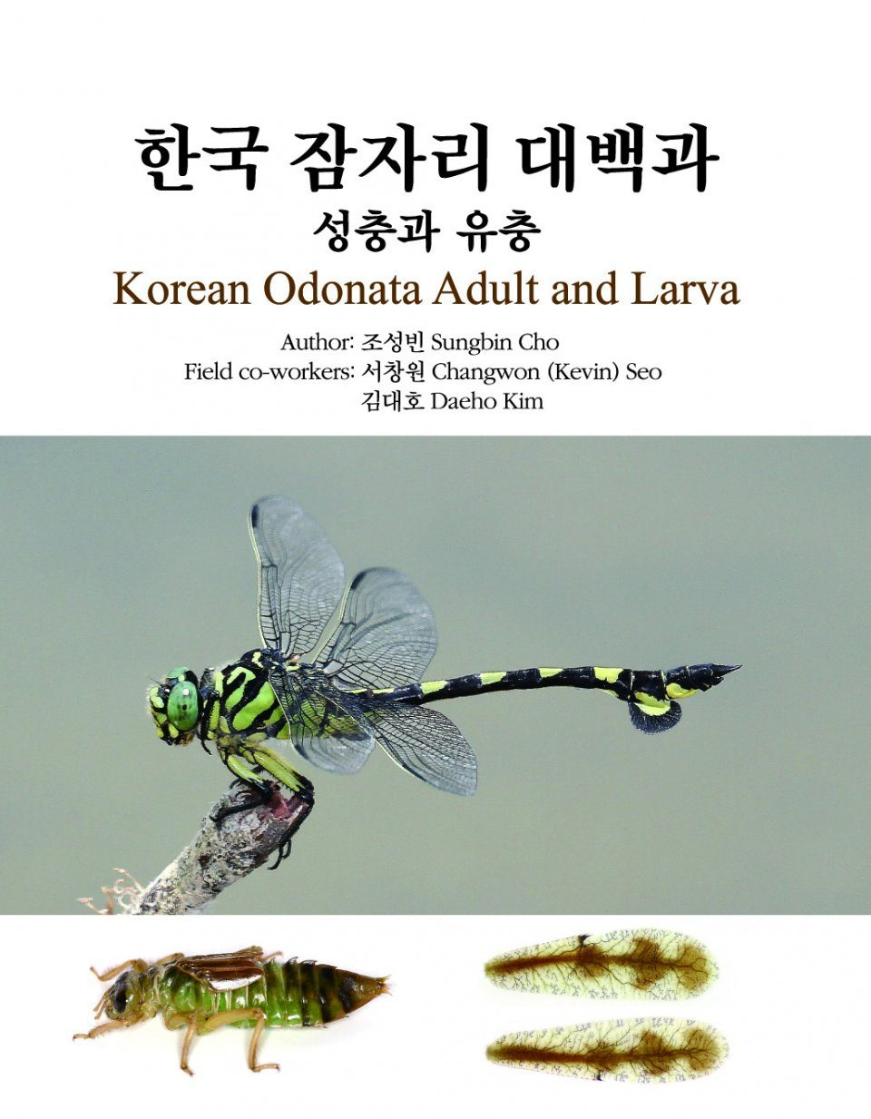 Korean Odonata Adult and Larva