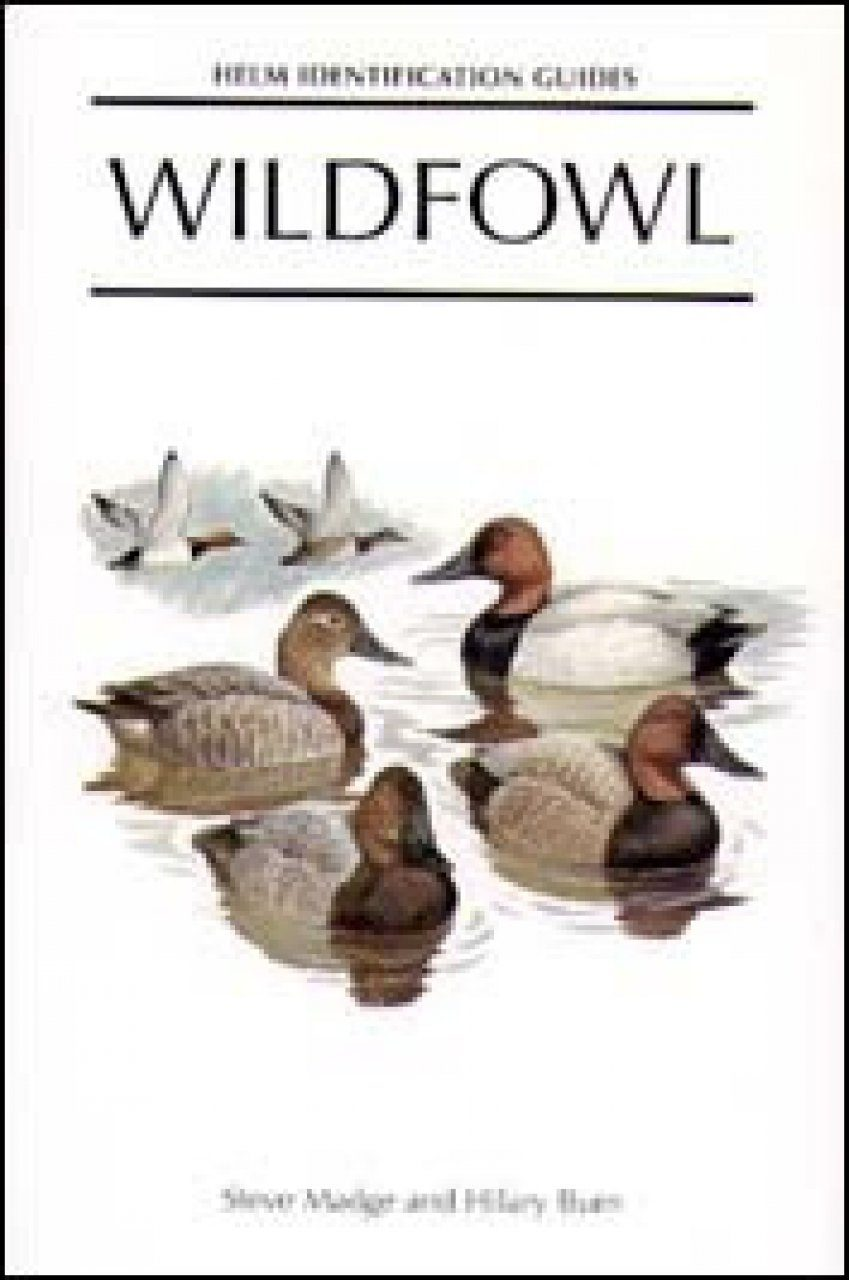 Wildfowl: An Identification Guide to the Ducks, Geese and Swans of the World
