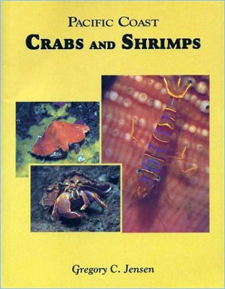 Pacific Coast Crabs and Shrimps