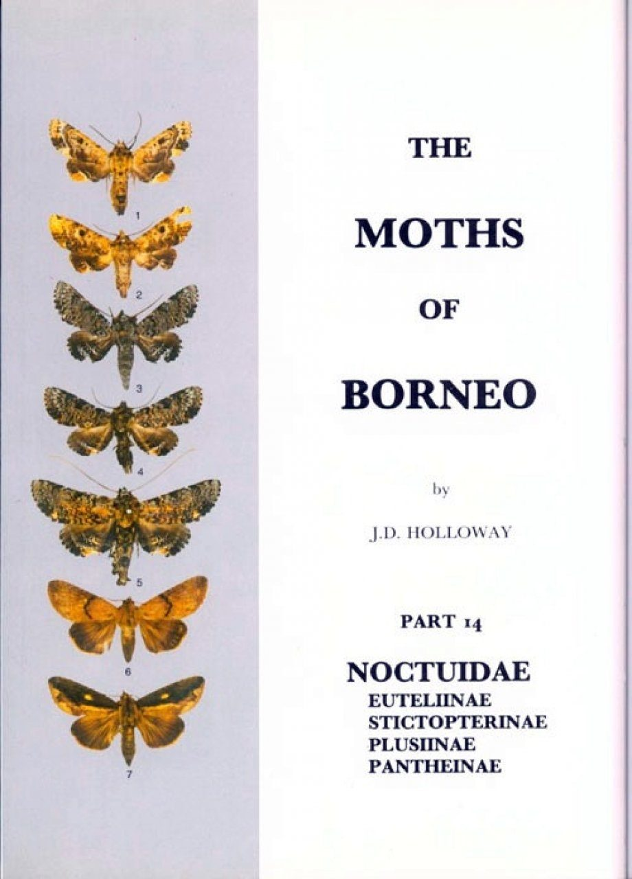 The Moths of Borneo, Part 14