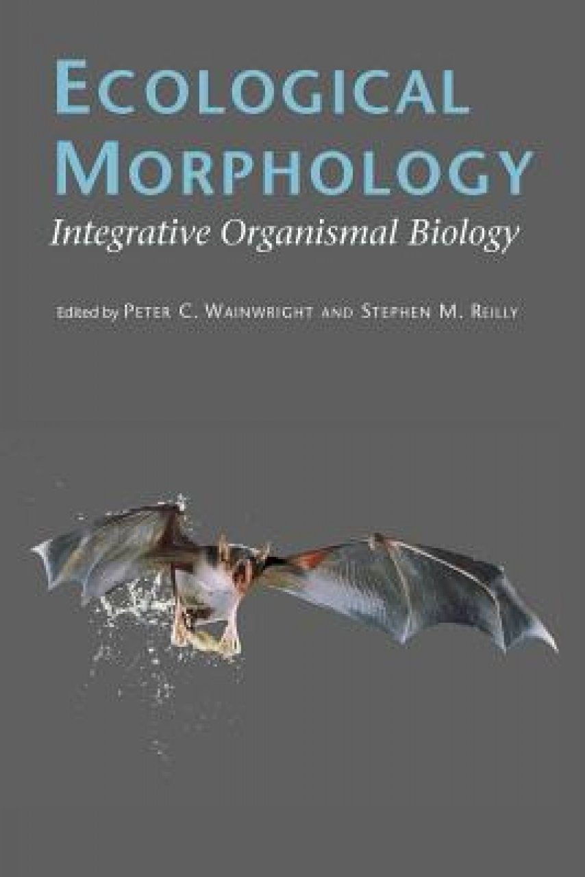 Ecological Morphology