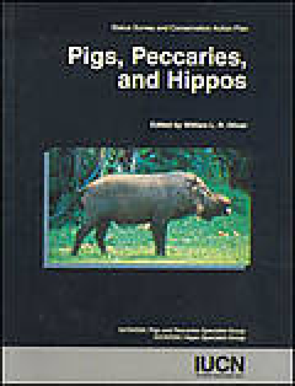 Pigs, Peccaries, and Hippos