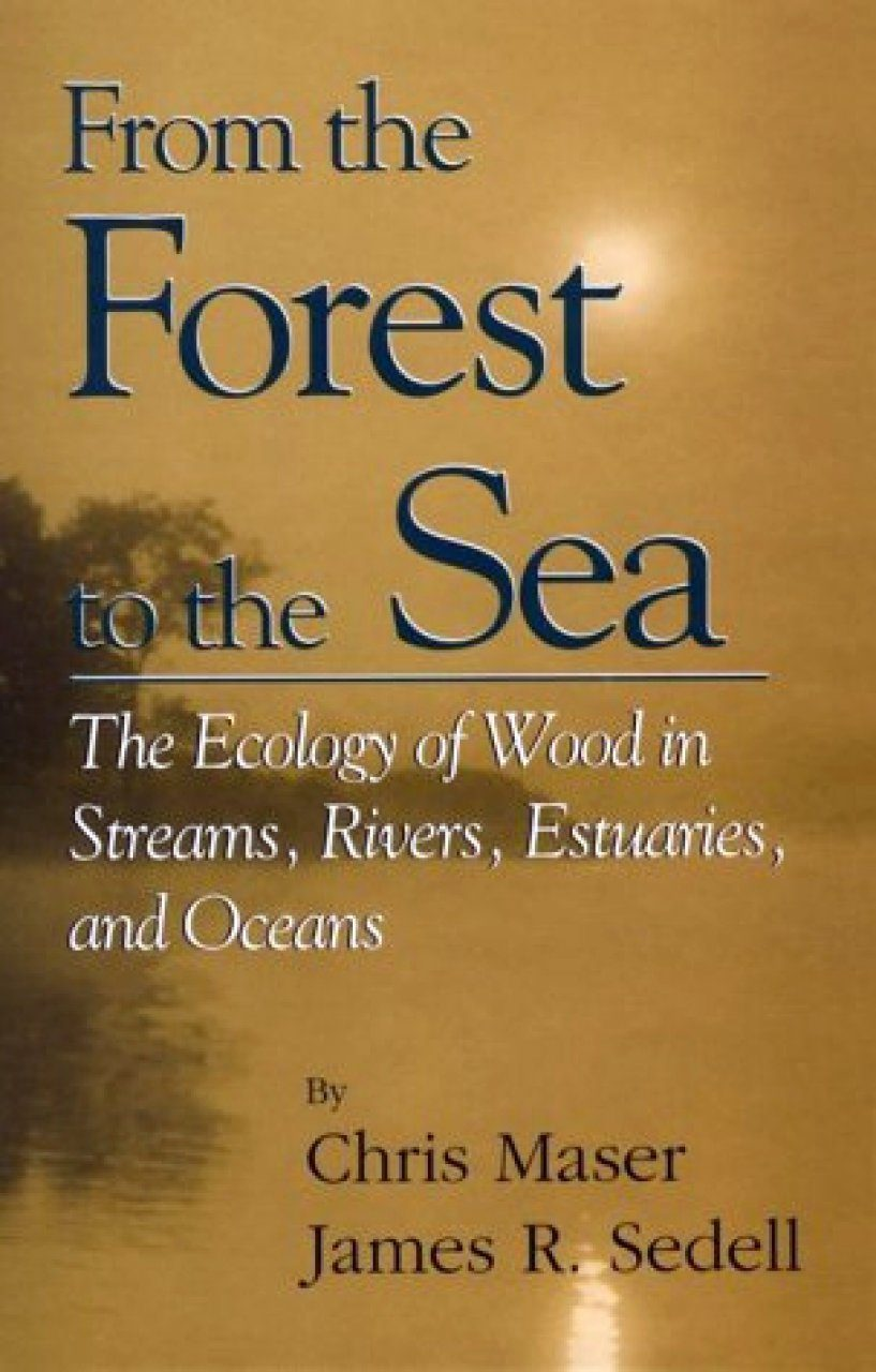 From the Forest to the Sea