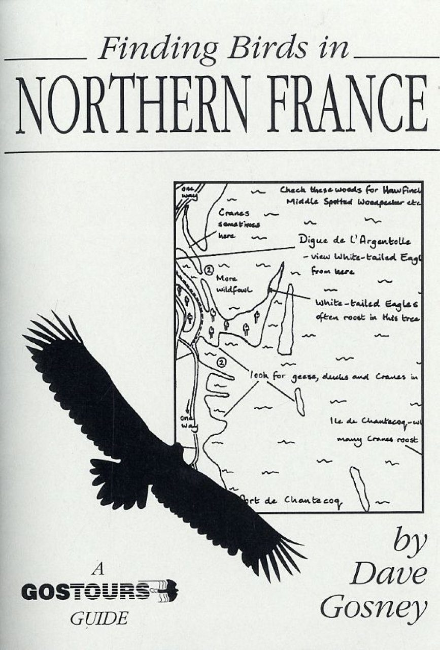 Finding Birds in Northern France