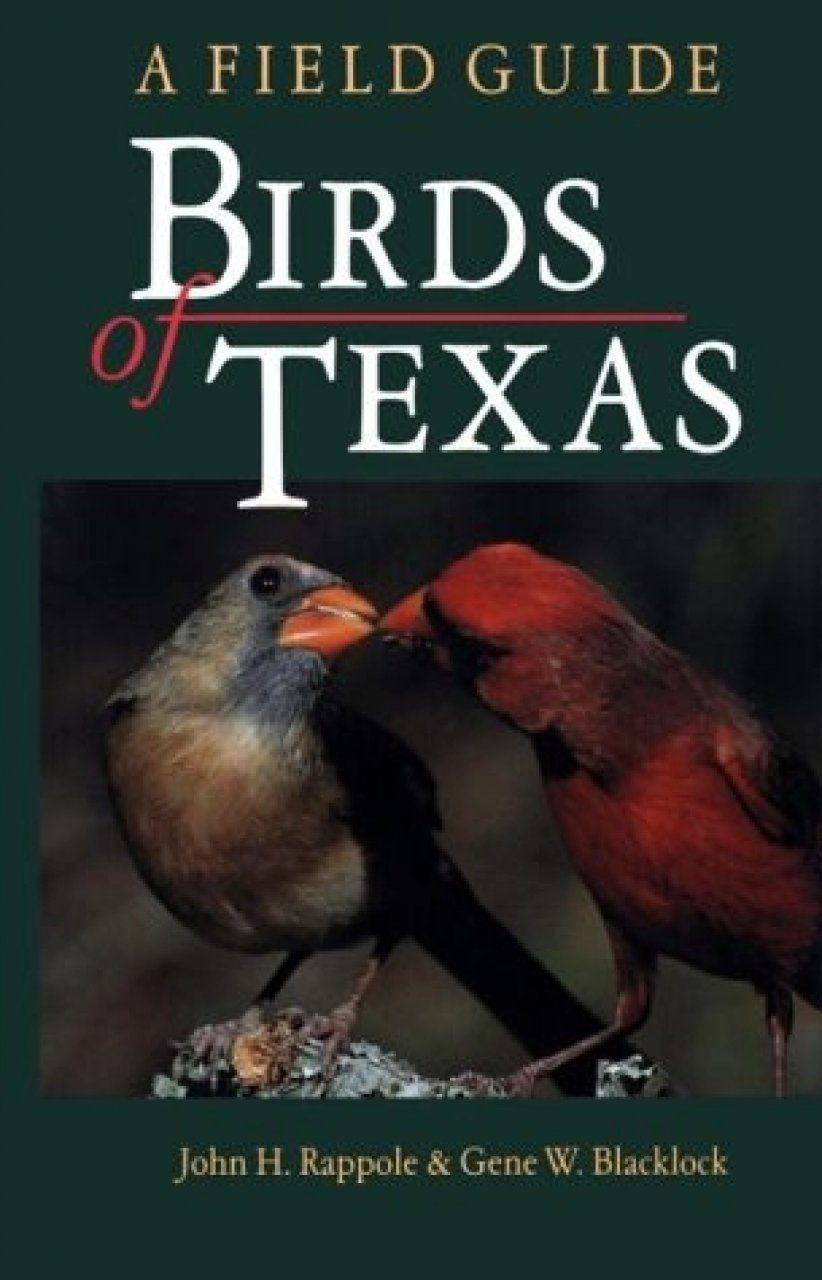 Birds of Texas: A Field Guide