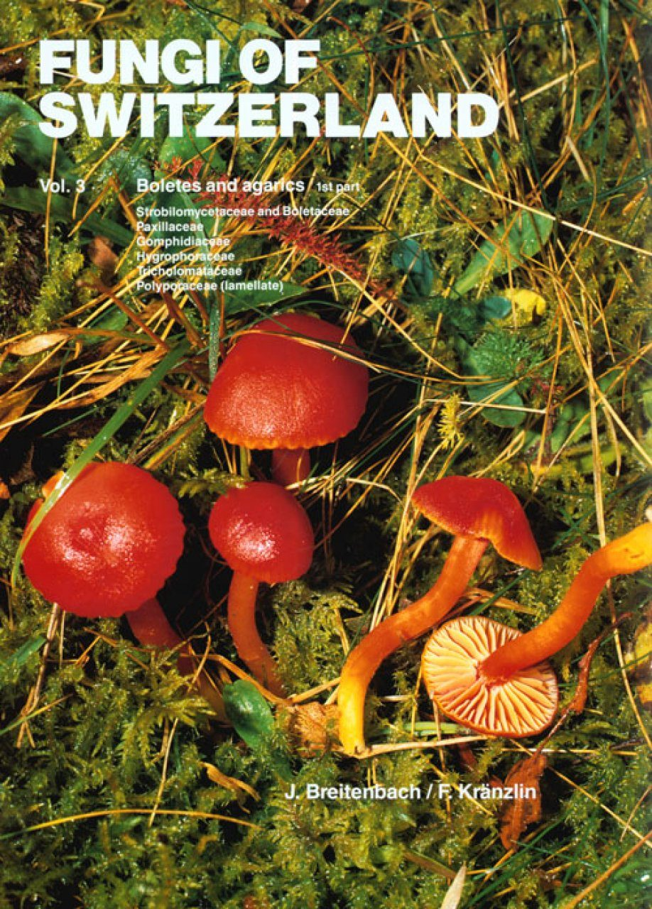 Fungi of Switzerland, Volume 3: Boletes and Agarics (Part 1)