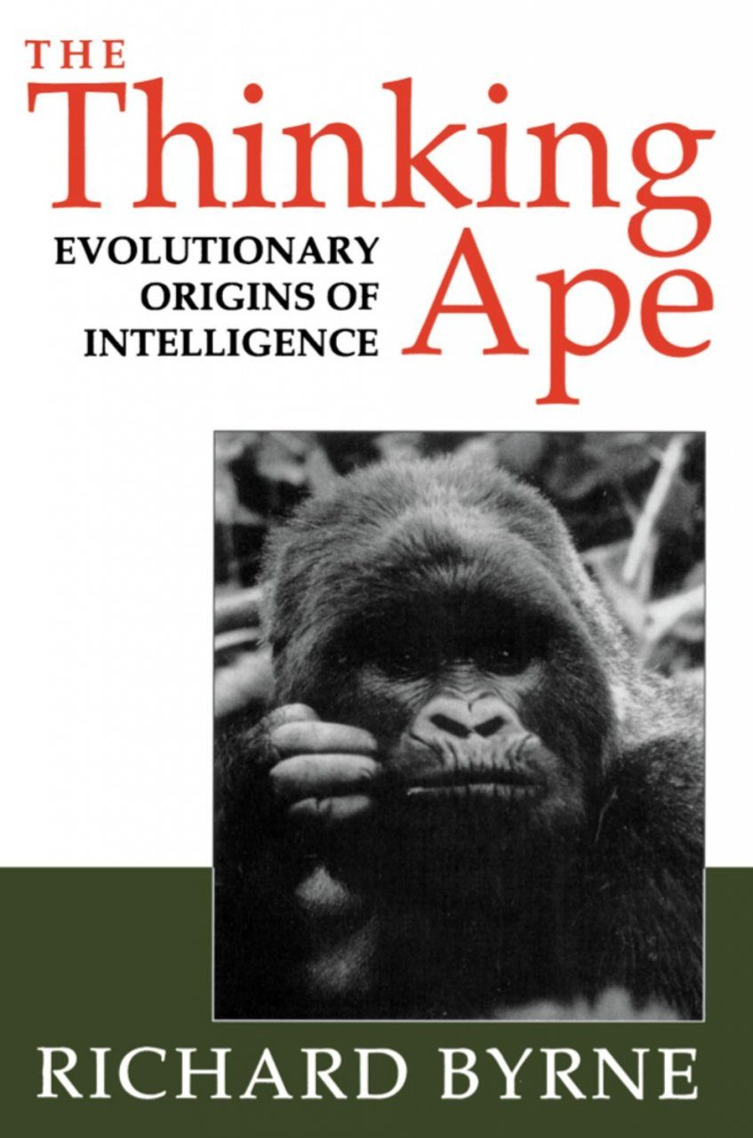 The Thinking Ape