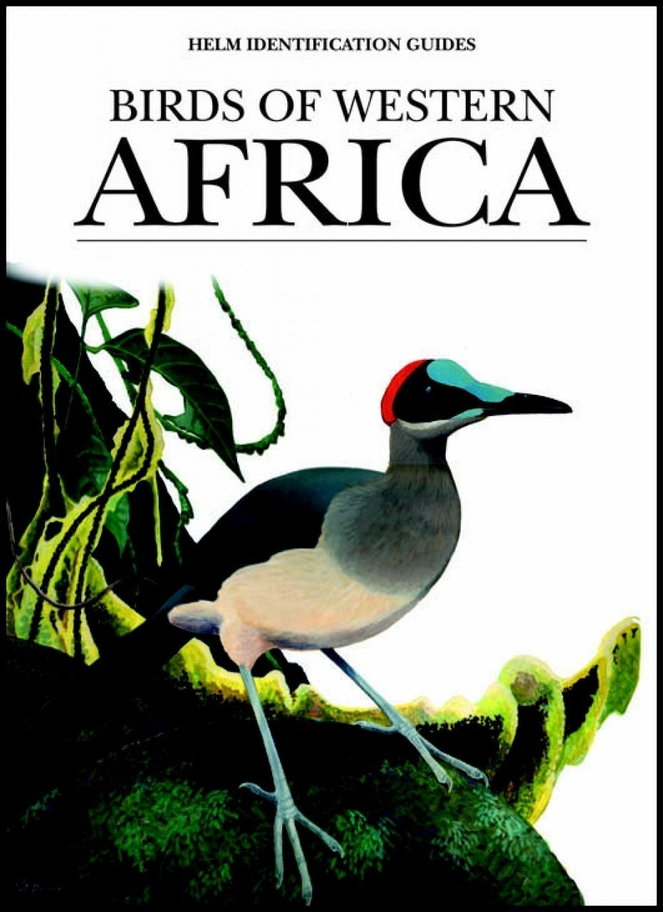 Birds of Western Africa: An Identification Guide