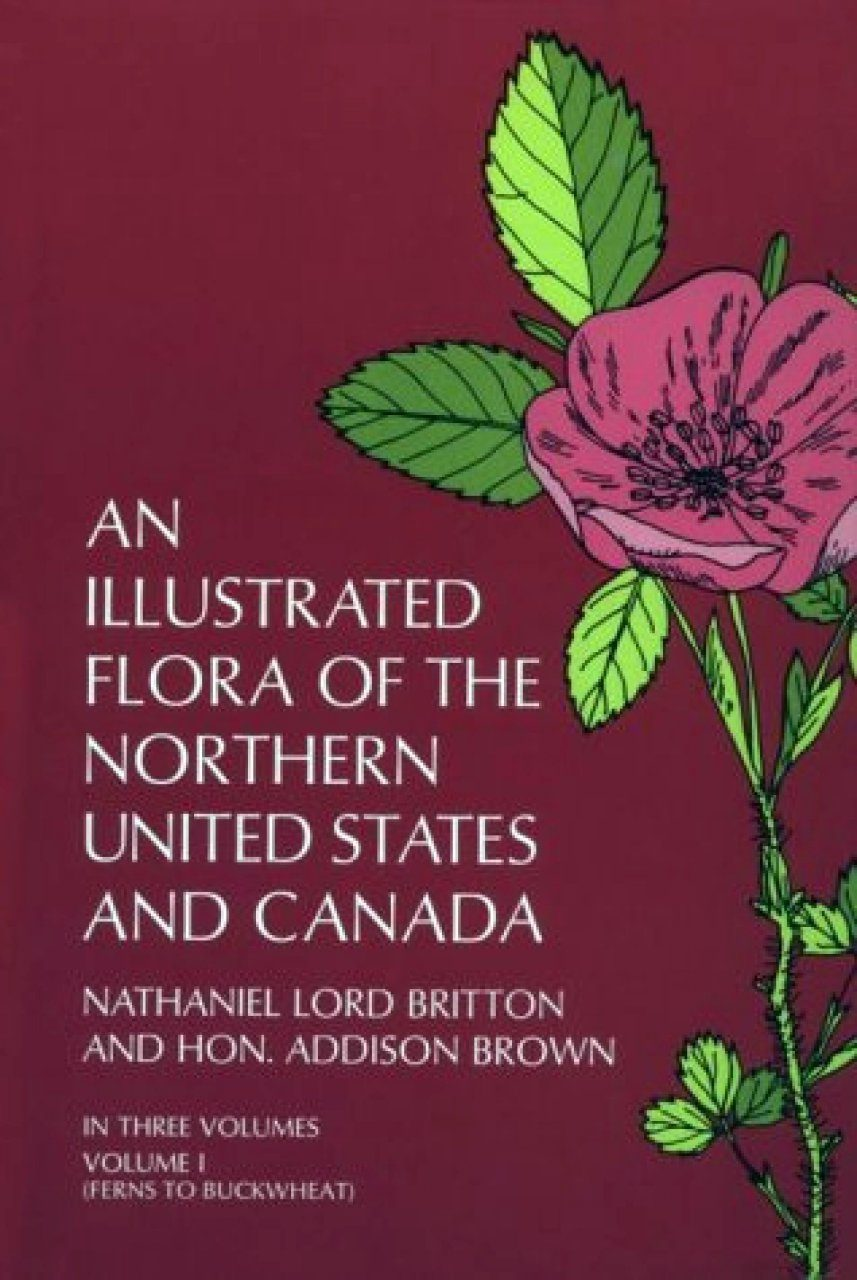 An Illustrated Flora of the Northern United States and Canada 1
