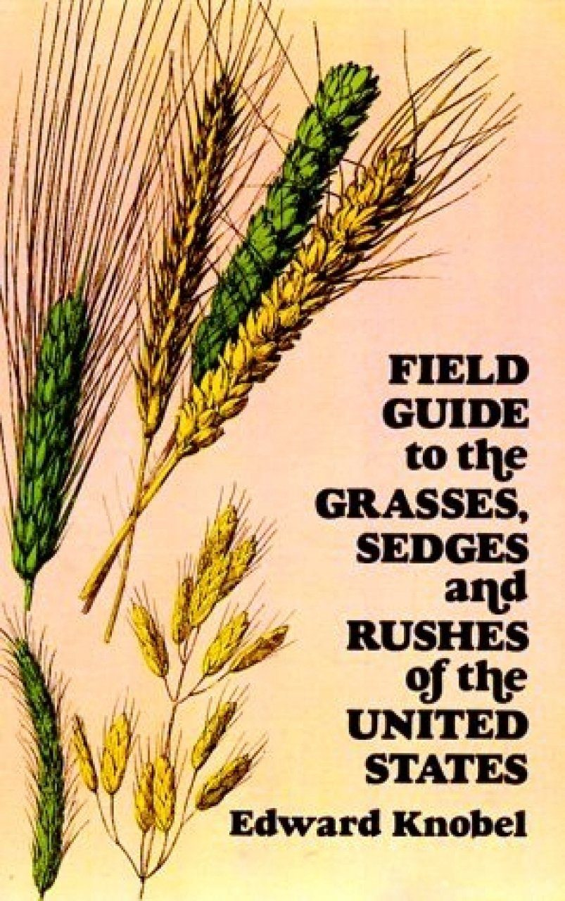 Field Guide to the Grasses, Sedges and Rushes of the United States