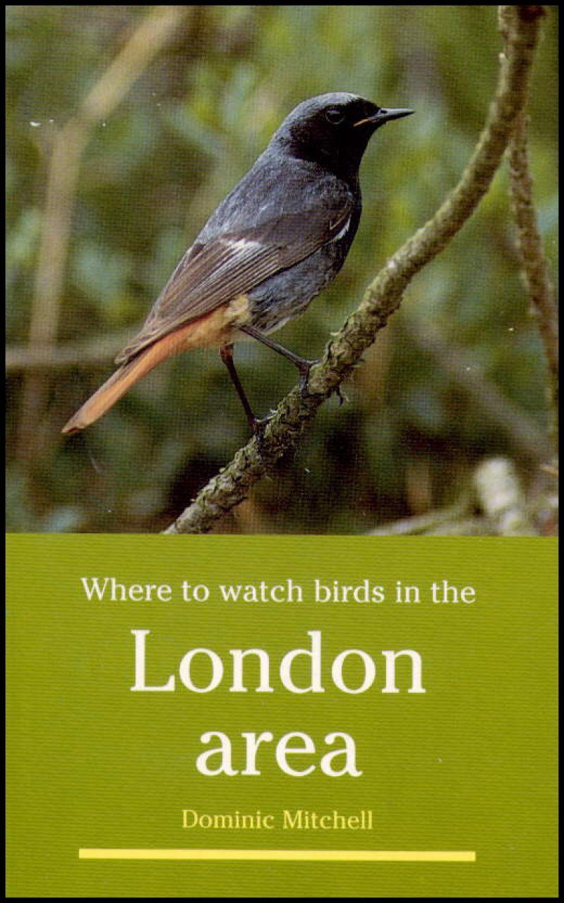 Where to Watch Birds in the London Area