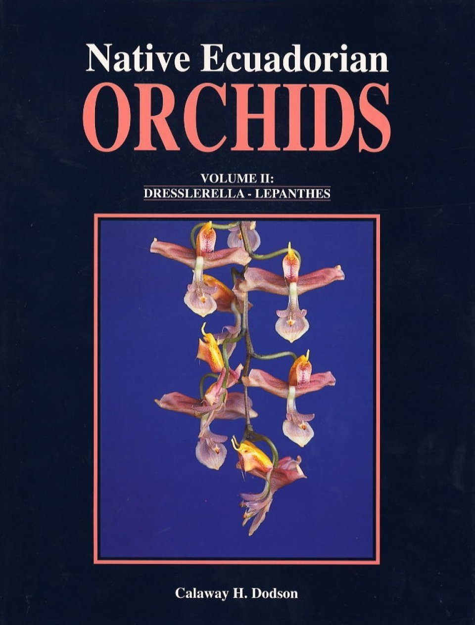 Native Ecuadorian Orchids, Volume 2: Dresslerella - Lepanthes