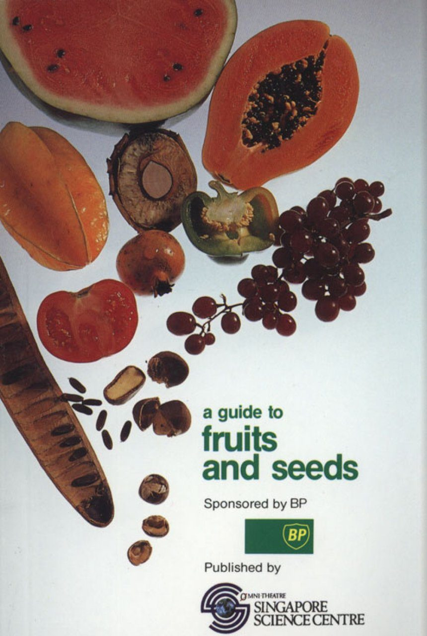 A Guide to Fruits and Seeds
