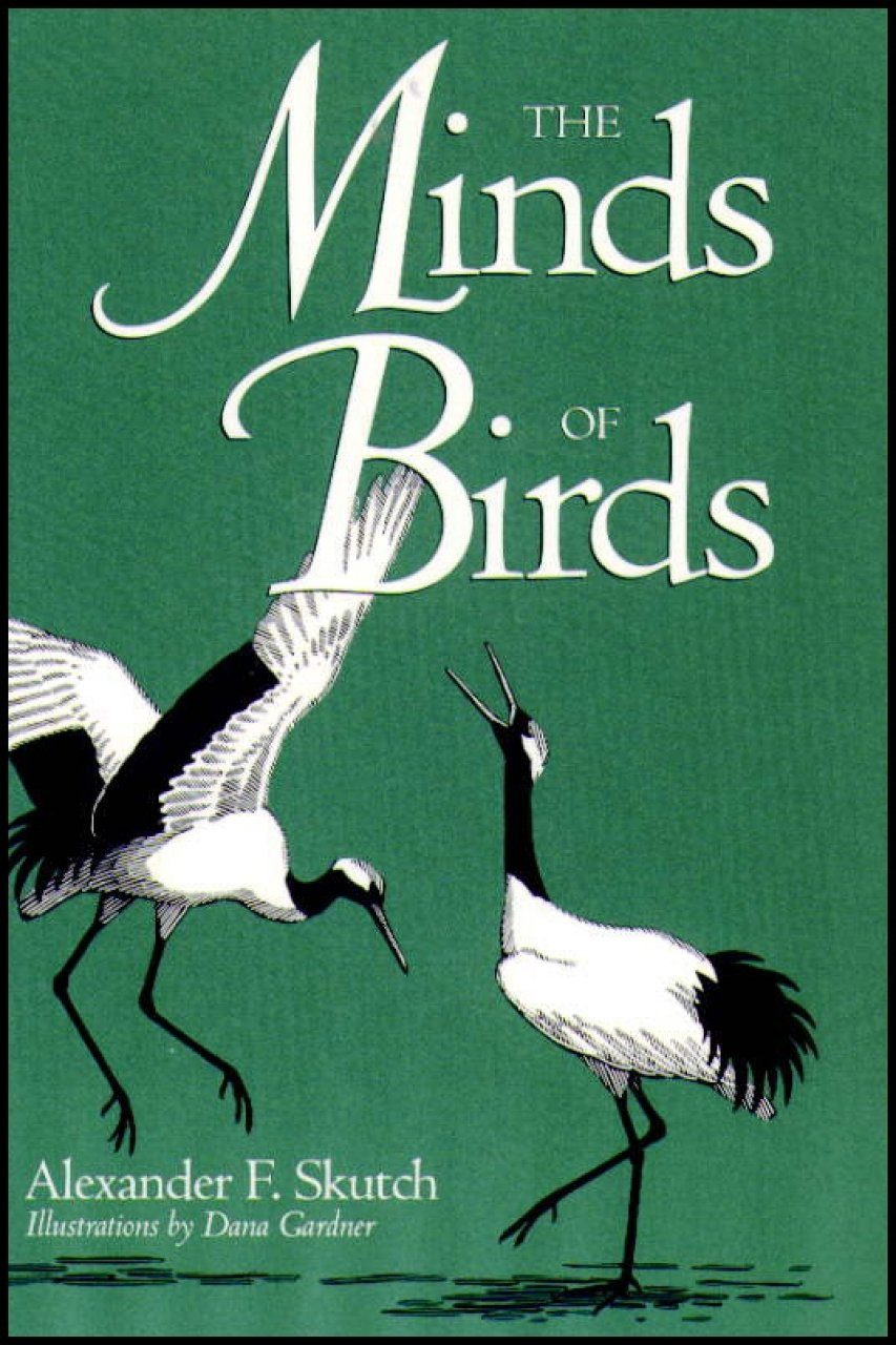 The Minds of Birds