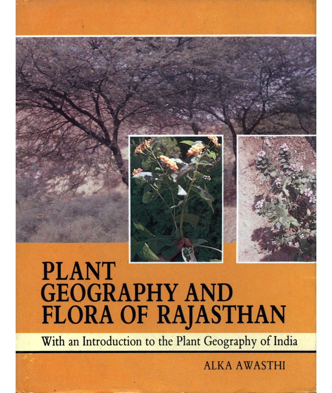Plant Geography and Flora of Rajasthan