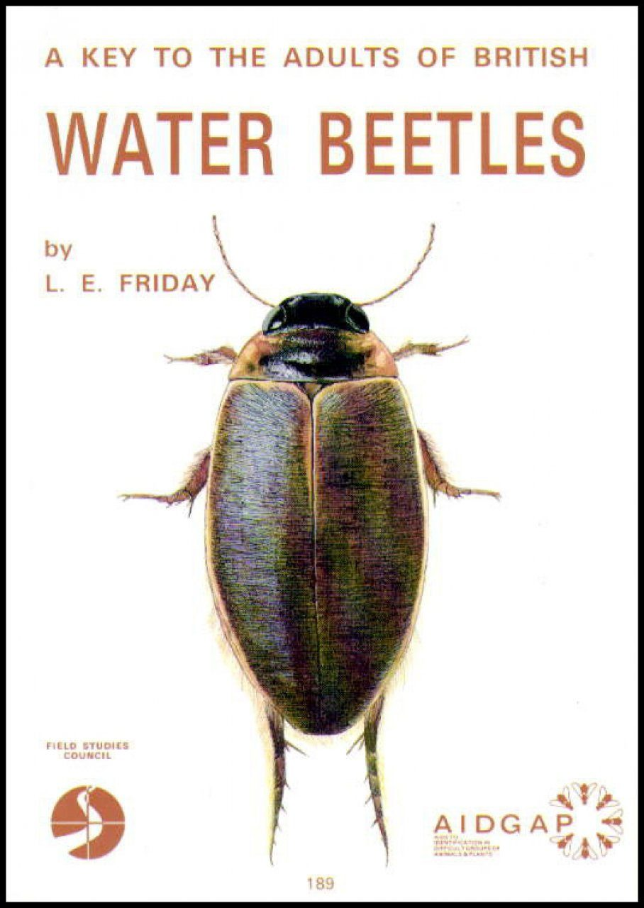 A Key to the Adults of British Water Beetles