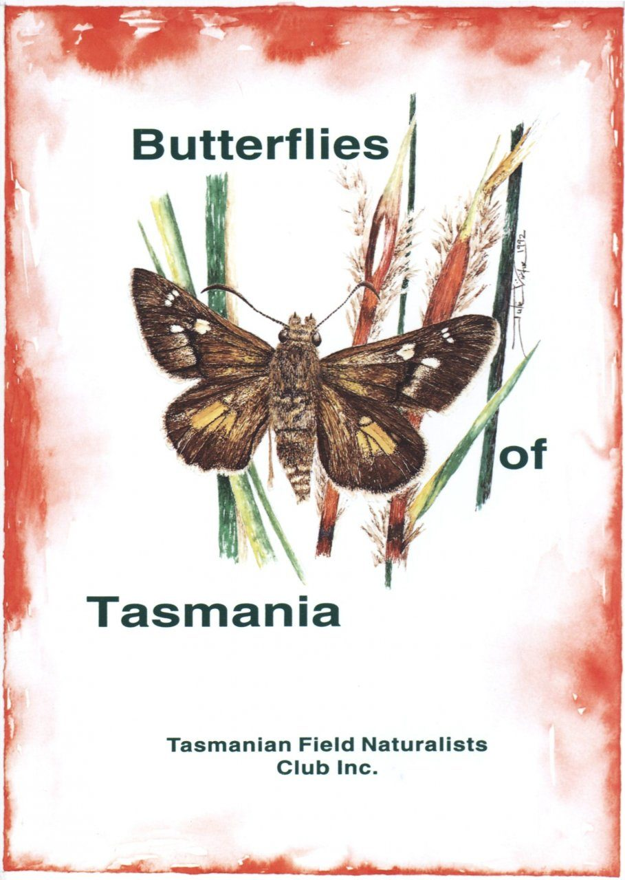 Butterflies of Tasmania