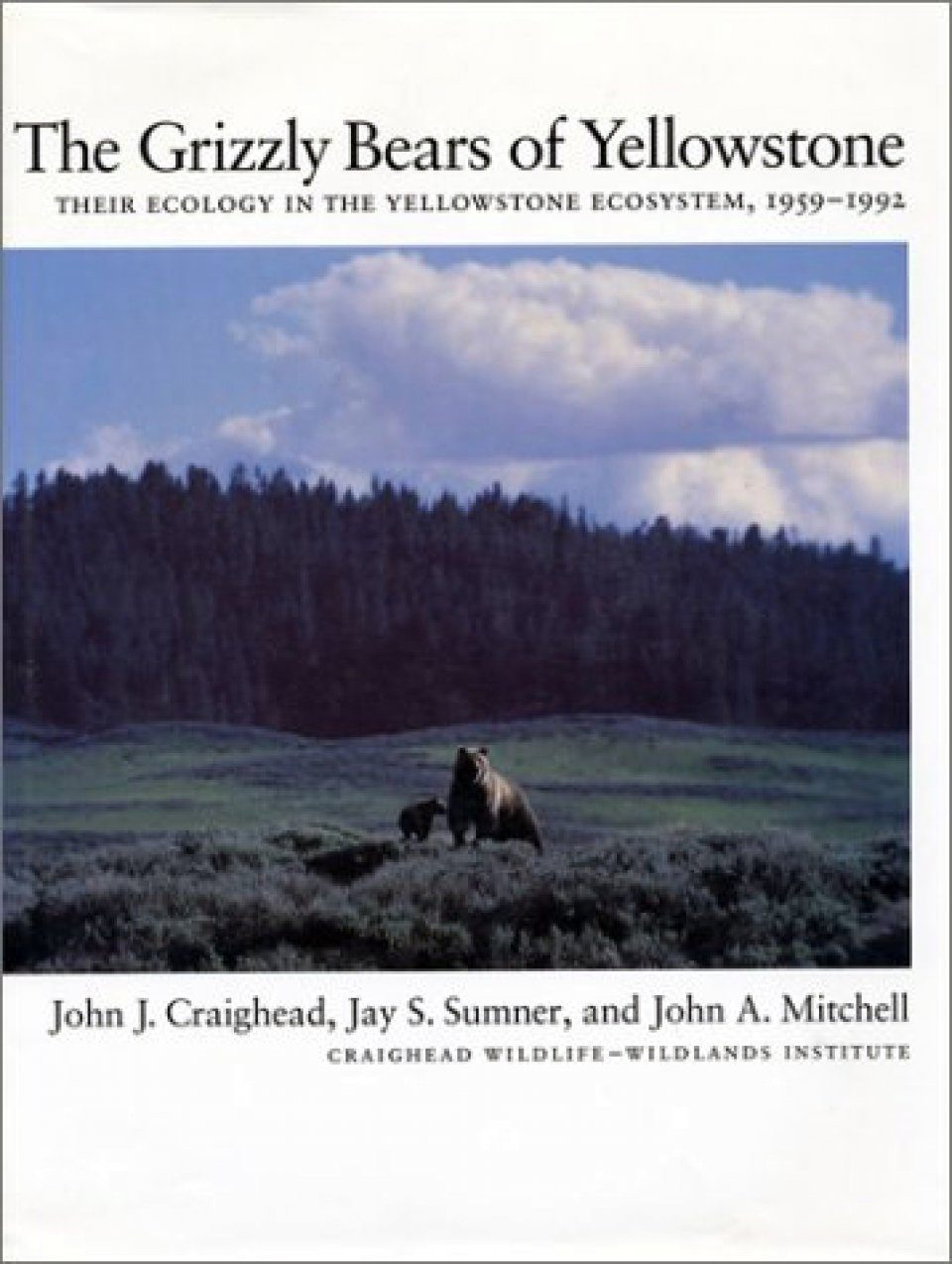 The Grizzly Bears of Yellowstone