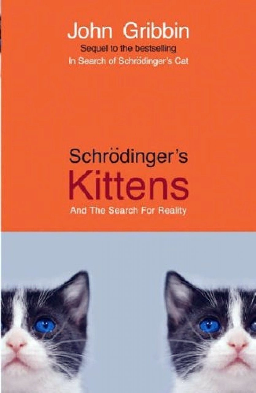 Schrödinger's Kittens and the Search for Reality