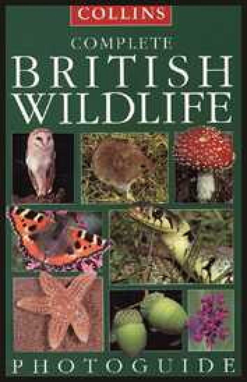 Collins Complete British Wildlife Photo Guide