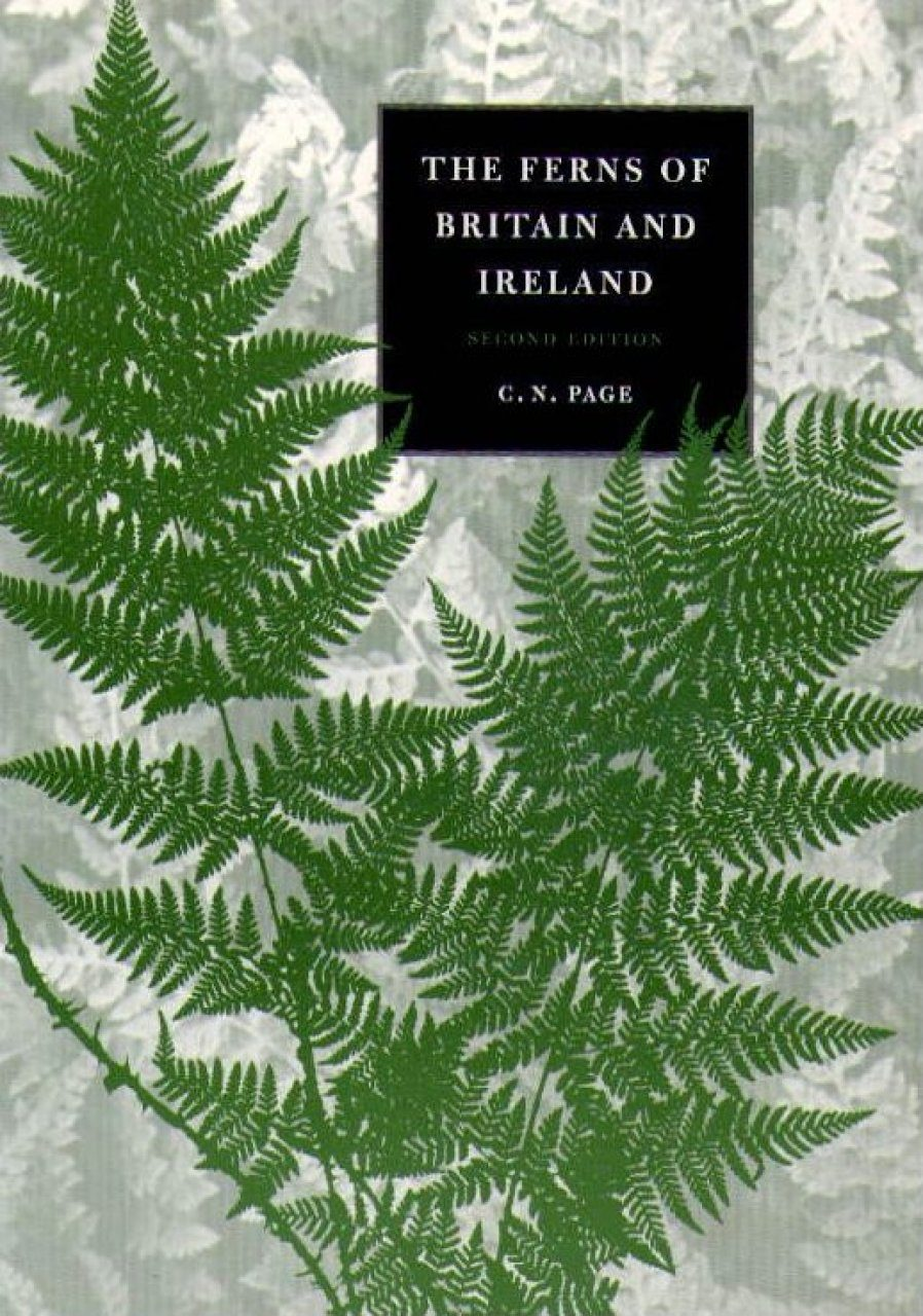 Ferns of Britain and Ireland
