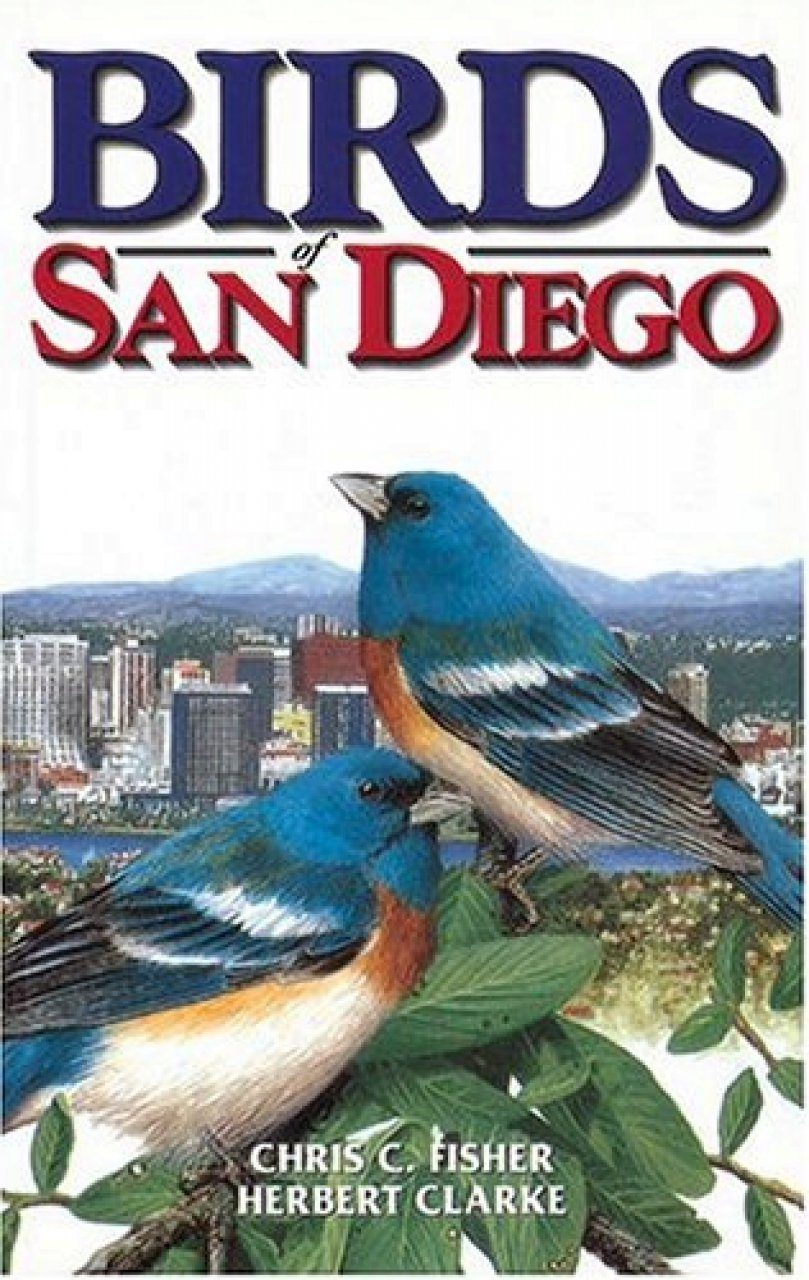 Birds of San Diego