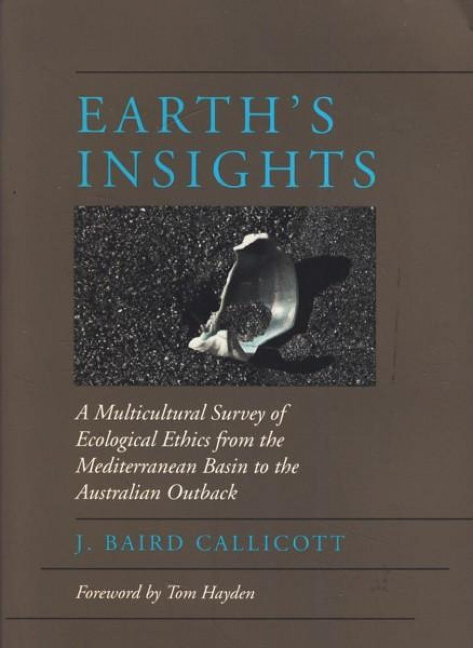 Earth's Insights