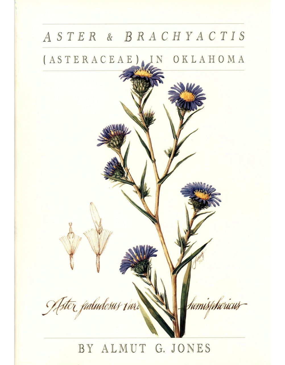 Aster and Brachyactis (Asteraceae) in Oklahoma