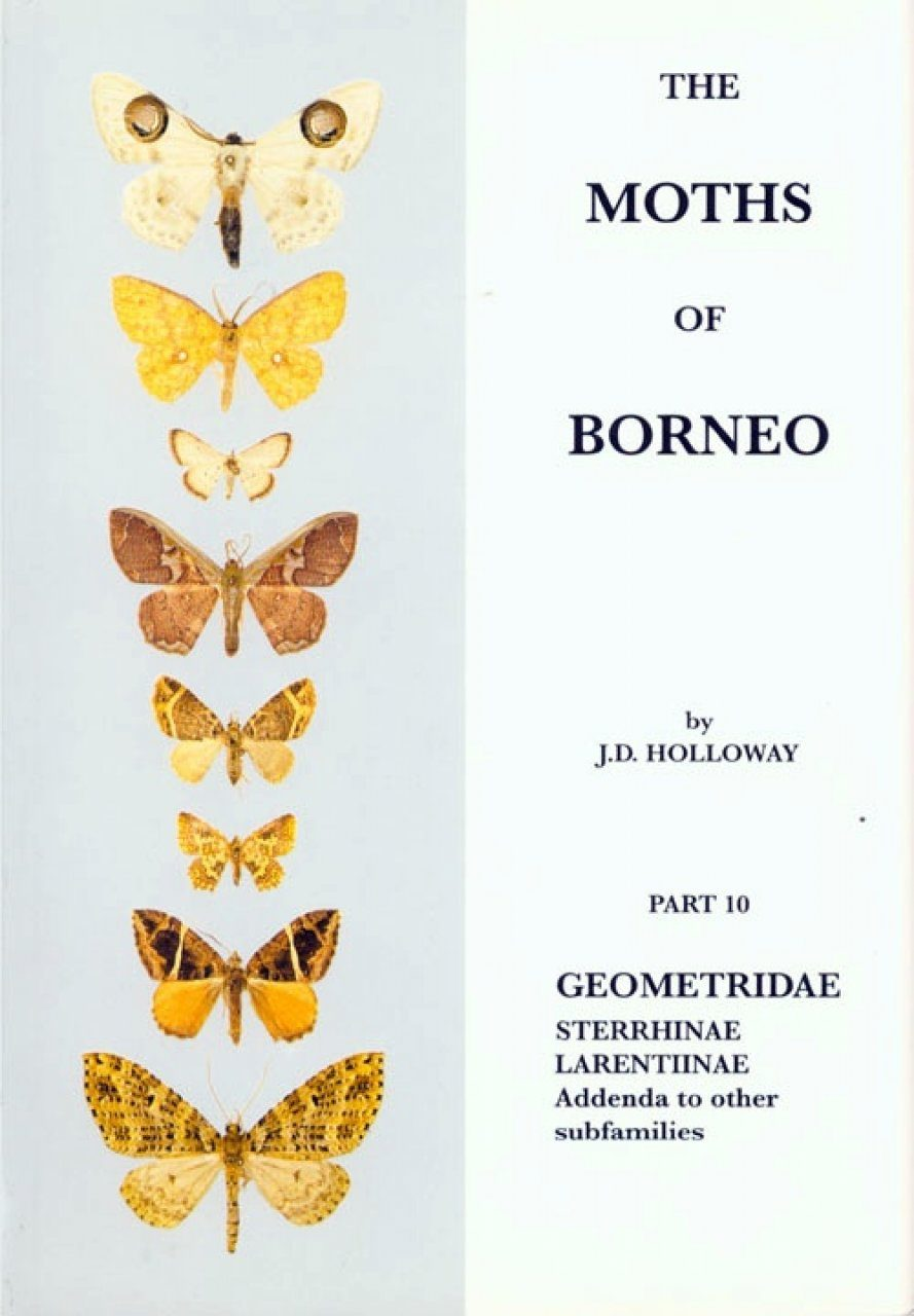 The Moths of Borneo, Part 10