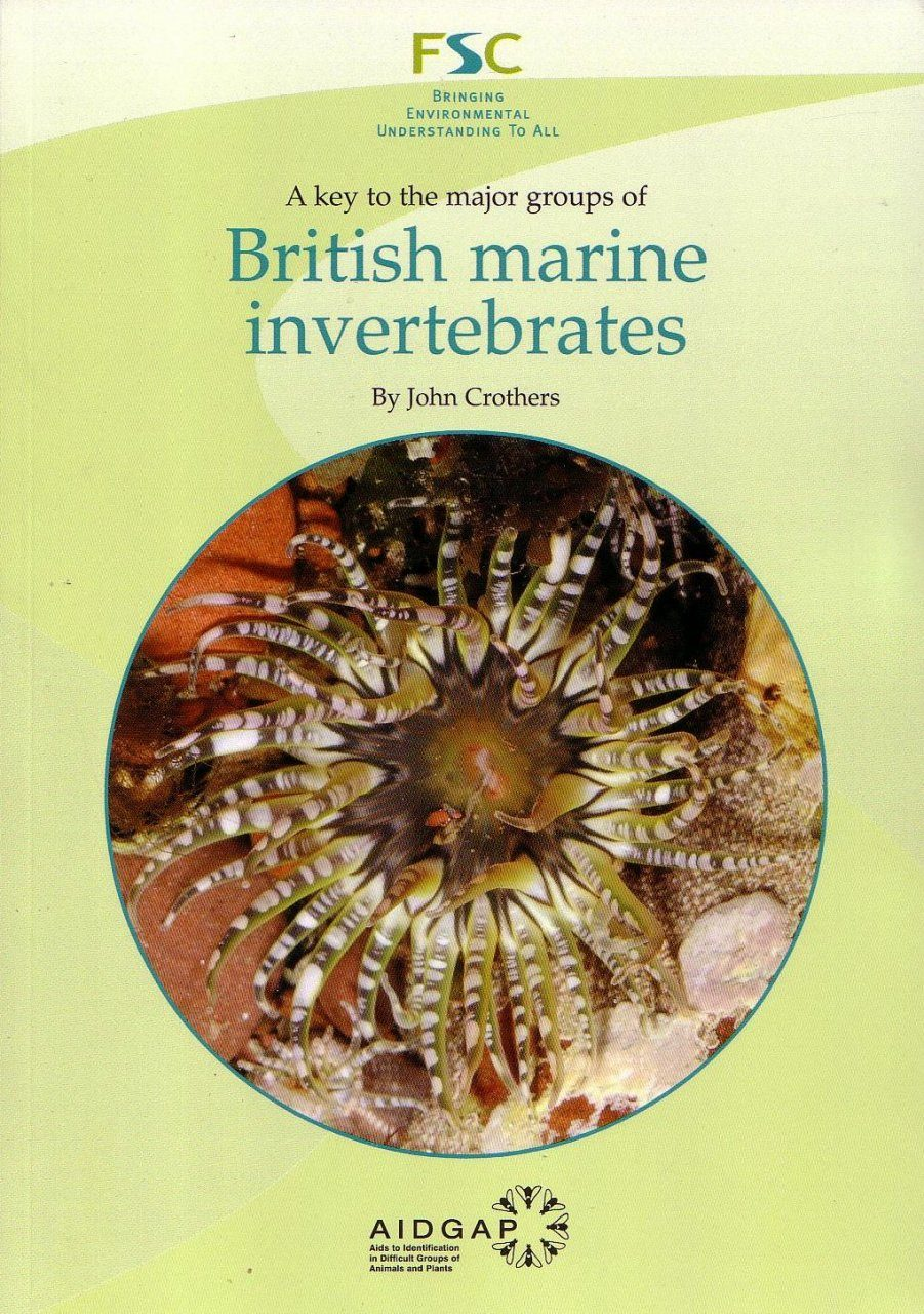 A Key to the Major Groups of British Marine Invertebrates
