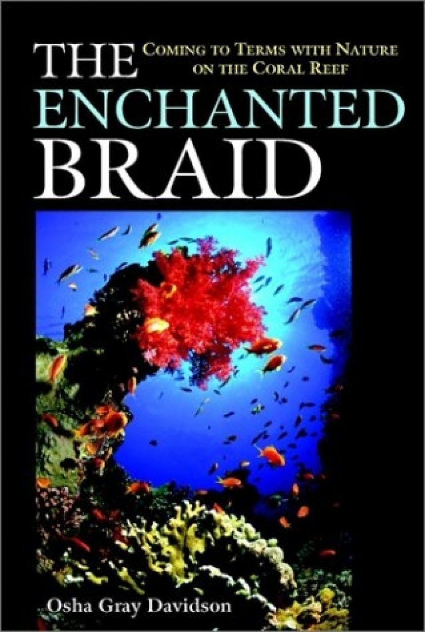 The Enchanted Braid