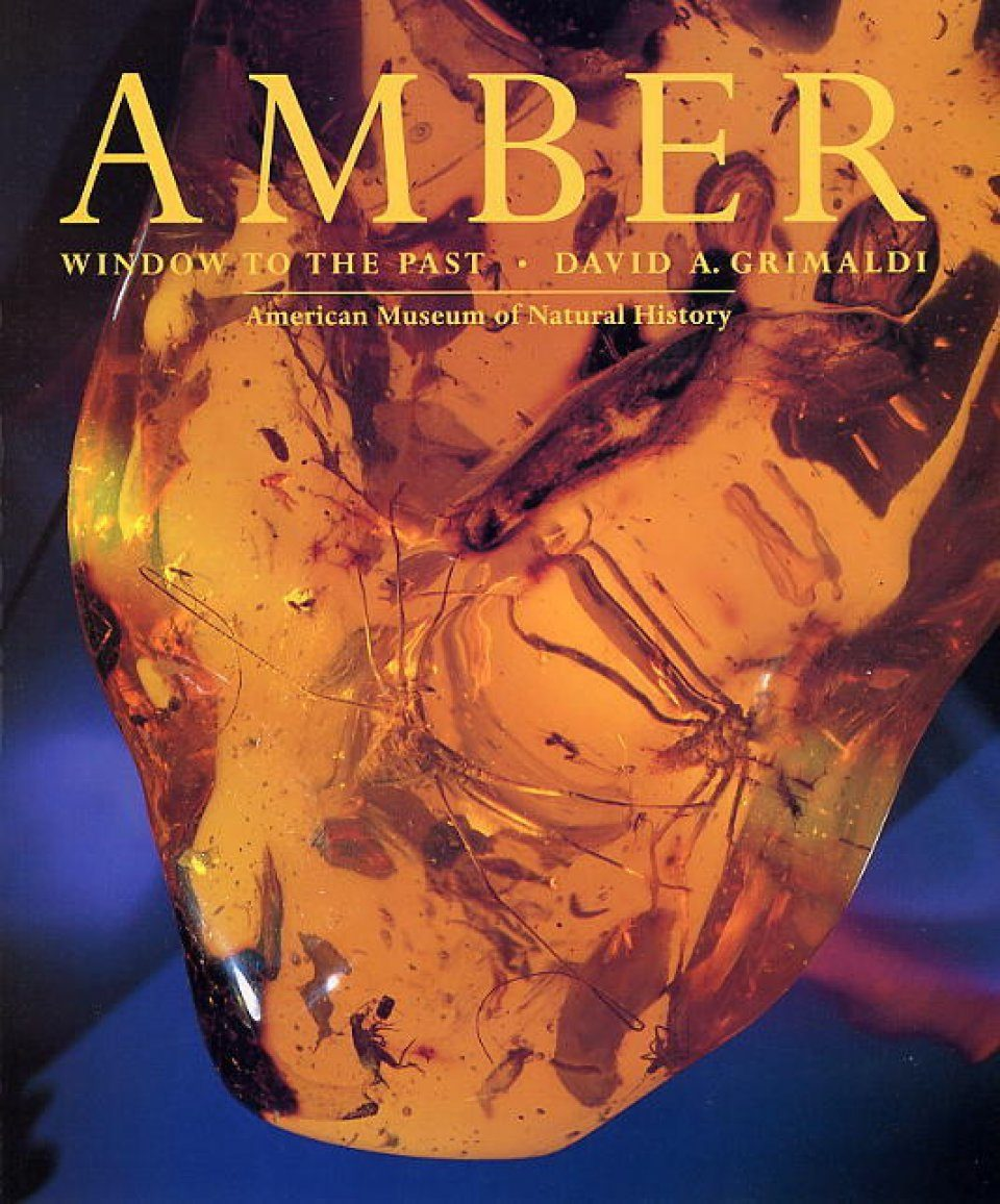 Amber: Window to the Past