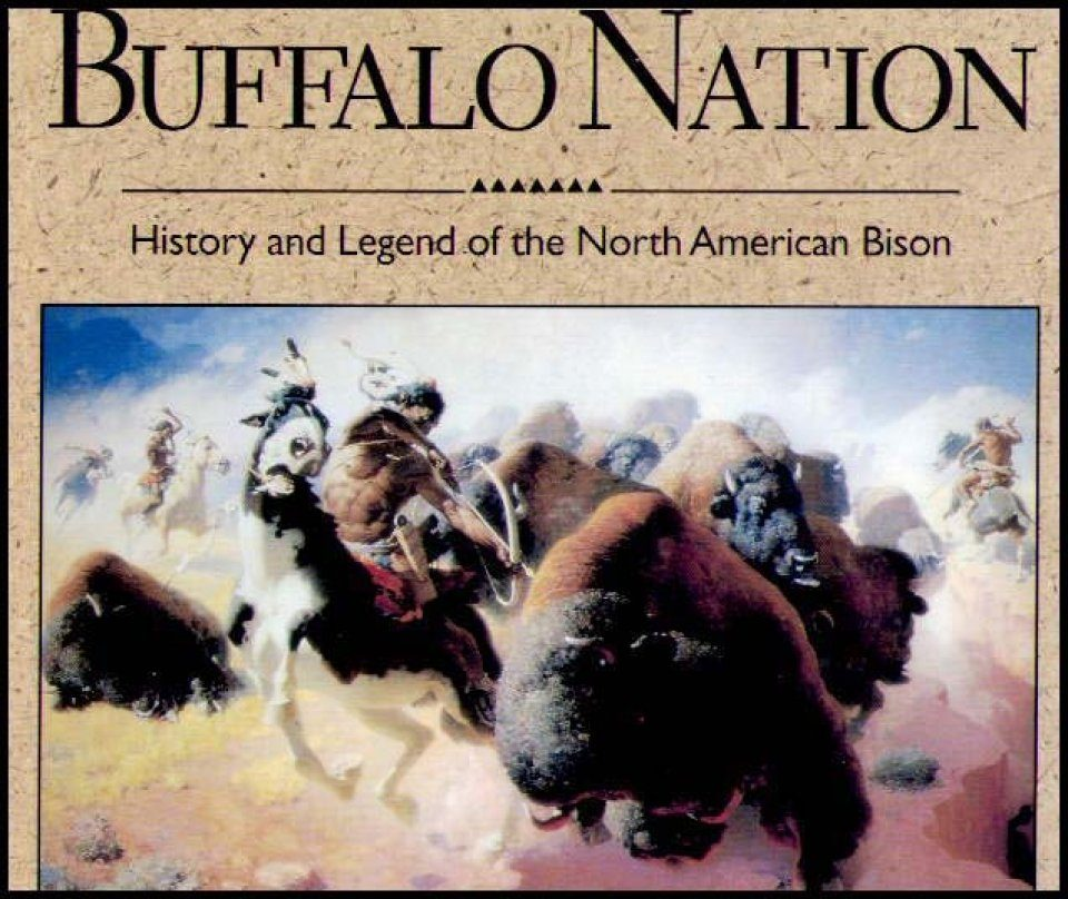 Buffalo Nation