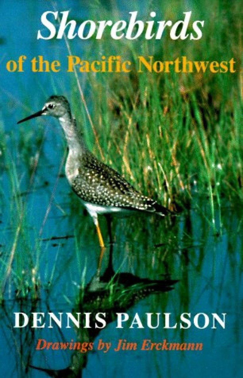 Shorebirds of the Pacific Northwest