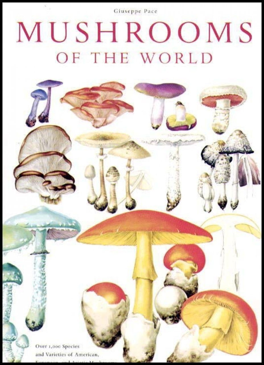 Mushrooms of the World