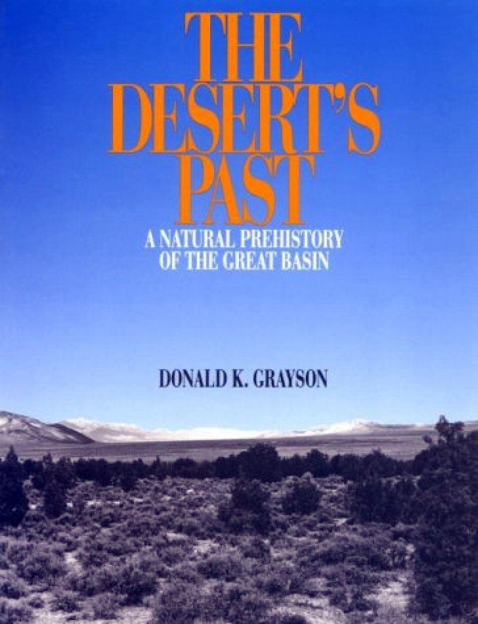 The Desert's Past