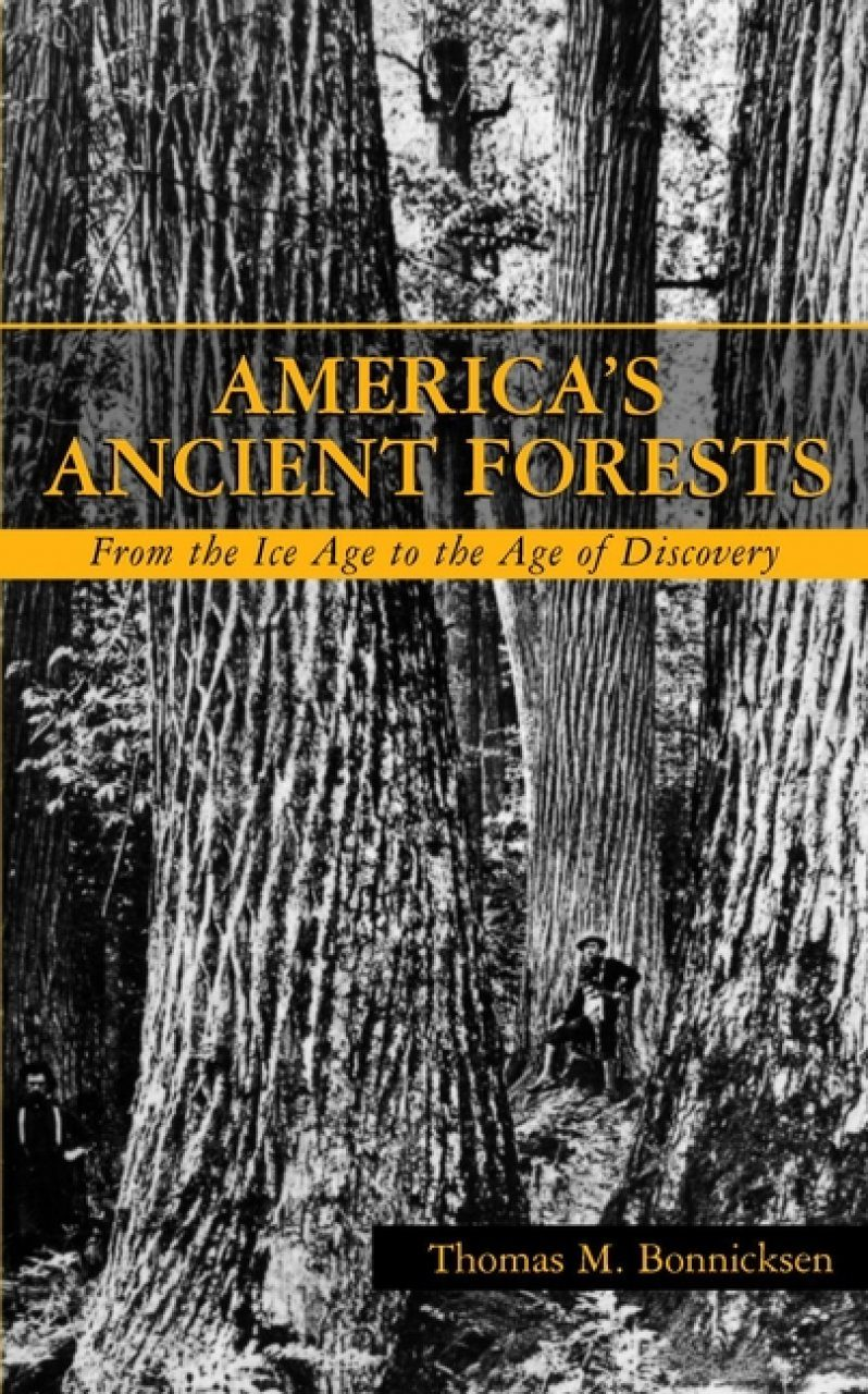 America's Ancient Forests