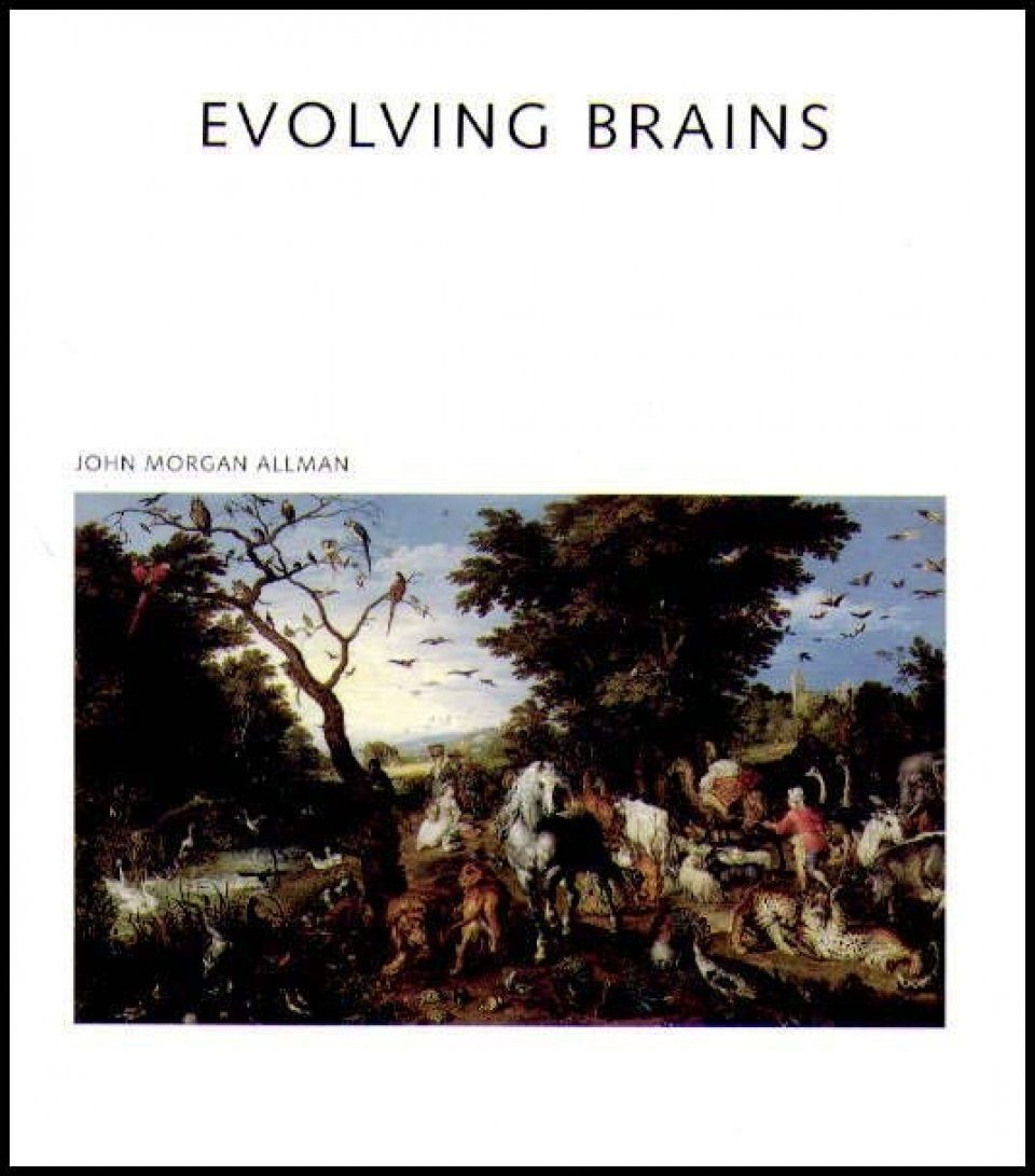 Evolving Brains